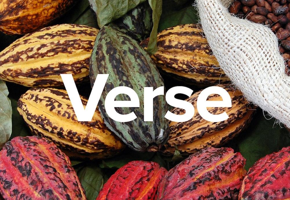 CAP Verse CS thumbnail Naming 2